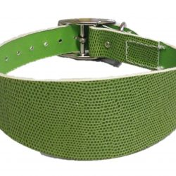 Collars, Leads and Muzzles