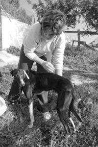 Spanish vet, Dr. Sandra, at the Cadiz kennels