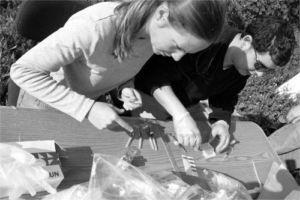Volunteers hard at work at Cadiz Kennels
